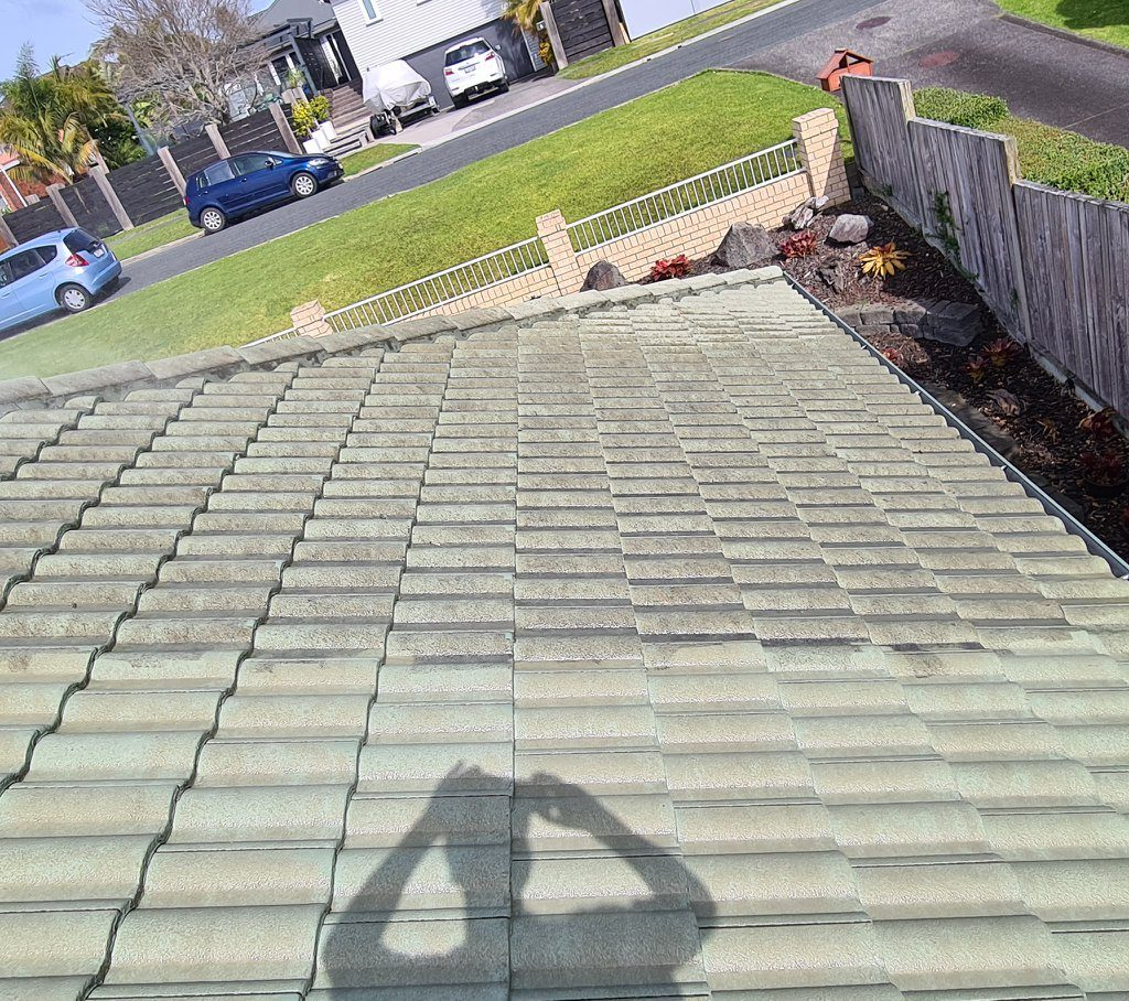 Auckland Roof Wash Company
