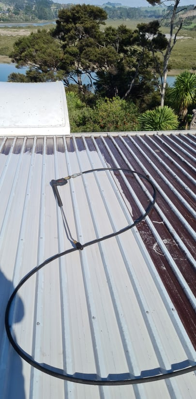 Specialist Roof Treatements to remove lichen, moss and mould from your roof