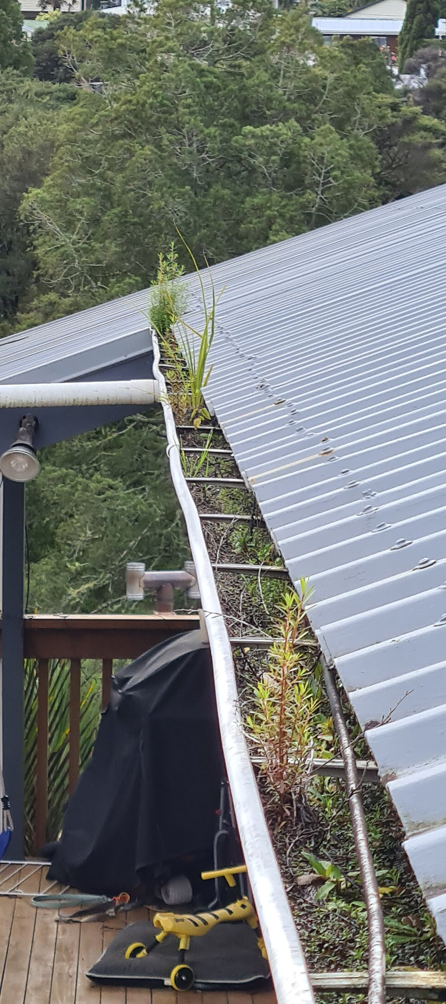 Auckland Gutter cleaning - clear blocked gutters